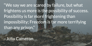 """We say we are scared by failure, but what frightens us more is the possibility of success. Possibility is far more frightening than impossibility; Freedom is far more terrifying than any prison.""   –Julia Cameron"