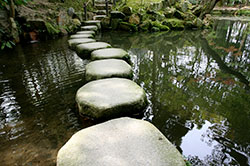 Stepping Stones to Discovery