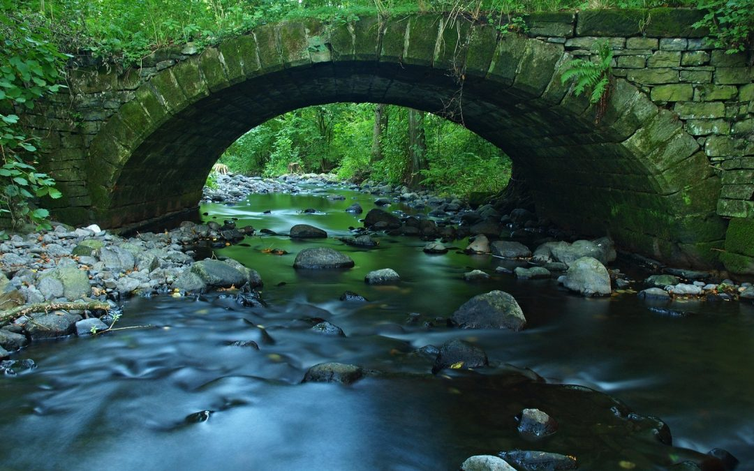 Bridge the Divide of Conflict with Direct Reports